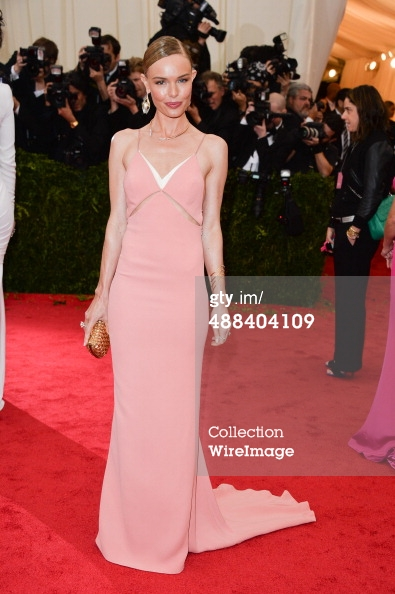 met gala 2014 - kate bosworth