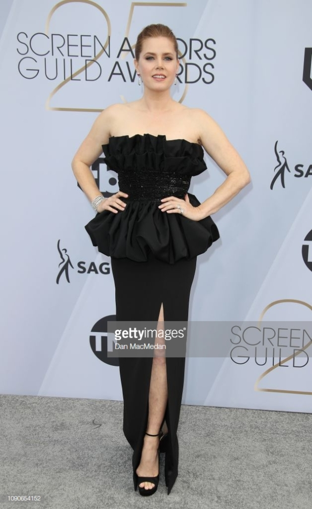 sags 19 amy adams.jpg